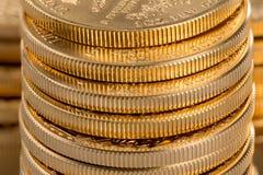 Samlingen av ett uns guld- myntar Royaltyfri Bild