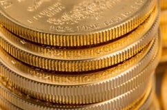 Samlingen av ett uns guld- myntar Fotografering för Bildbyråer