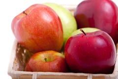 Bunte Äpfel Lizenzfreies Stockbild