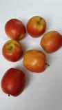 Bunte Äpfel lizenzfreie stockbilder