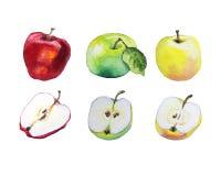 Bunte Äpfel des Aquarells vektor abbildung