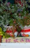Bunte Anlagen und Blumentöpfe mit chinesischem Schreiben stockfoto