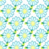 Bunte Aquarellgänseblümchen auf weißem Hintergrund stock abbildung