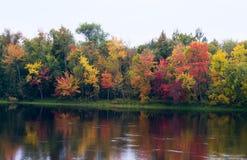 Bunte Bäume auf der Flussbank lizenzfreies stockfoto