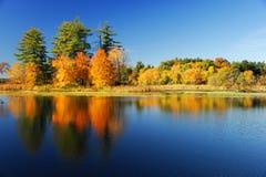 Bunte Bäume des Herbstes unter dem Morgensonnenlicht, das im ruhigen Fluss sich reflektiert Lizenzfreie Stockfotos