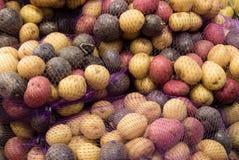 Bunte Babykartoffeln in einer Masche bauscht sich Stockfotografie