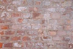 Bunte Backsteinmauer Lizenzfreie Stockfotos