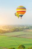 Bunte Ballone über dem grünen Reisfeld Stockfotografie