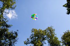Bunte Ballone im blauen Himmel nahe grünem Baum Lizenzfreies Stockfoto