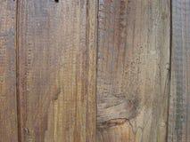 Bunte Baumbeschaffenheit Lizenzfreies Stockbild