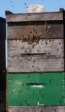Bunte Bienenkästen Lizenzfreies Stockfoto