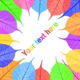 Bunte Blätter für Ihren Text Stockbilder