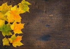 Bunte Blätter im Fall auf hölzernes Brett der bunte Hintergrund Stockbild
