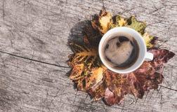 Bunte Blätter im Kreis und in einem Tasse Kaffee auf hölzernem Hintergrund lizenzfreie stockfotos