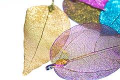 Bunte Blätter im weißen Hintergrund lizenzfreie stockfotografie