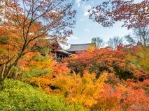Bunte Blätter mit japanischem Pavillon Lizenzfreie Stockfotografie
