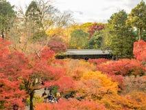 Bunte Blätter mit japanischem Pavillon Stockbilder