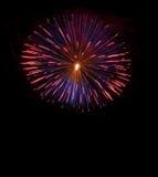 Bunte blaue Feuerwerke Hintergrund, Feuerwerke Festival, Unabhängigkeitstag am 4. Juli Freiheit Bunte Feuerwerke lokalisiert im d Lizenzfreie Stockbilder