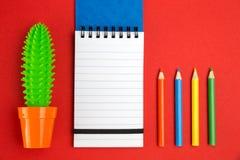 Bunte Bleistifte mit Kaktus und Notizbuch stockfotografie