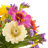Bunte Blumen Stockbild