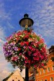 Bunte Blumen auf Straßenlaterne Lizenzfreies Stockbild