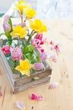 Bunte Blumen in den kleinen Flaschen Stockfotos