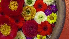 Bunte Blumen in einer Schüssel mit Wasser, Badekurorttherapiekonzept stockbild