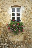 Bunte Blumen im Fenster des alten Gebäudes Stockfoto