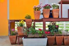 Bunte Blumen im Potenziometer Stockbilder