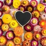 Bunte Blumen mit Herzform lizenzfreie stockbilder