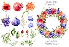 Bunte Blumen- und Fruchtsammlung mit Orchideen, Blumen, Blättern, Granatapfel, Traube, Orange, Feigen und Beeren Lizenzfreies Stockfoto
