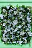Bunte Blumenanordnung für weißen Eustoma, Hortensien und oth Stockfotografie