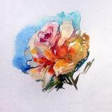 Bunte Blumenrose des Aquarellkunsthintergrundes empfindlich stock abbildung