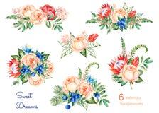 Bunte Blumensammlung mit Rosen, Blumen, Blätter, Protea, blaue Beeren, Fichtenzweig, Eryngium Stockfotos