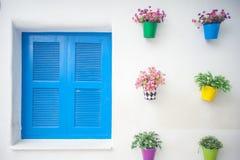 Bunte Blumentöpfe auf der Wand Stockbild
