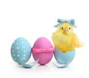 Bunte Eier Ostern mit Blumen Lizenzfreie Stockfotos