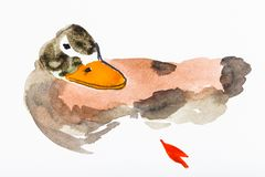 Bunte Ente gezeichnet durch Aquarelle lizenzfreie stockbilder