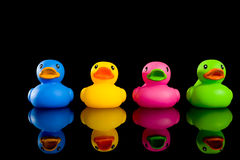 Bunte Enten auf Schwarzem Lizenzfreies Stockfoto