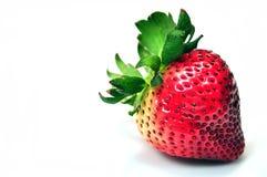 Bunte Erdbeere Lizenzfreie Stockbilder