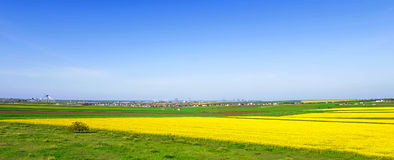 Bunte Felder im Frühjahr Lizenzfreies Stockfoto