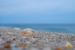 Bunte Felsen und zerquetschte Oberteile waschen sich oben auf einem Jersey-Strand an d Stockbilder