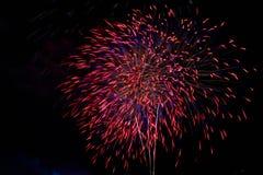Bunte Feuerwerke leuchten im schwarzen Himmel Lizenzfreie Stockfotos