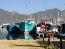 Bunte Fischerboote im Hout-Bucht-Hafen Lizenzfreies Stockbild