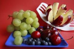 Bunte Früchte Stockfotografie