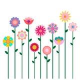 Bunte Frühlingsblumenfeldillustration lokalisiert auf weißem Hintergrund Stockbild