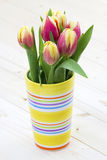 Bunte frische Frühlingstulpeblumen lizenzfreies stockbild