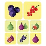 Bunte Frucht- und Beerenikonen eingestellt Lizenzfreies Stockbild