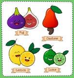 Bunte Fruchtillustration Stockfotos