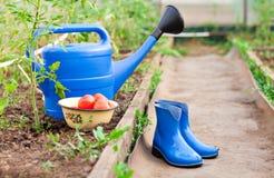 Bunte Gartenhilfsmittel Gießkanne, Gummistiefel und Rührstange Stockfotos