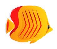 Bunte gelbe Fische mit roten Streifen Stockfoto
